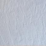 Limestone Paver : Limestone