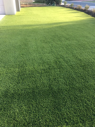 Synthetic Lawn in Quinns Rocks
